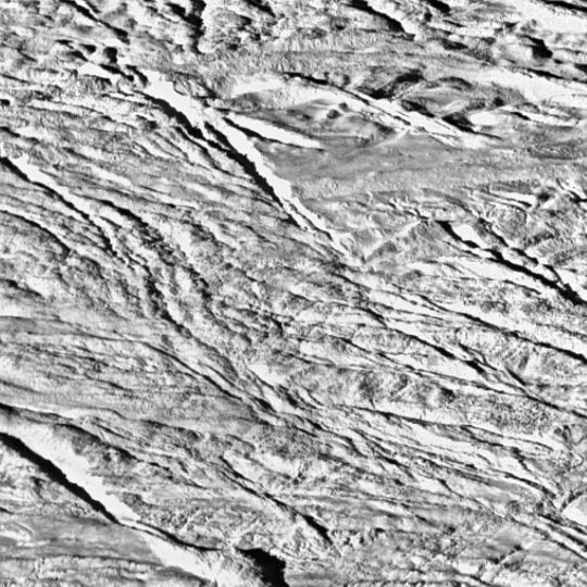 Boulders on surface of Enceladus
