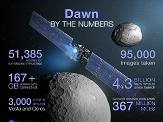 Dawn By the Numbers Infographic