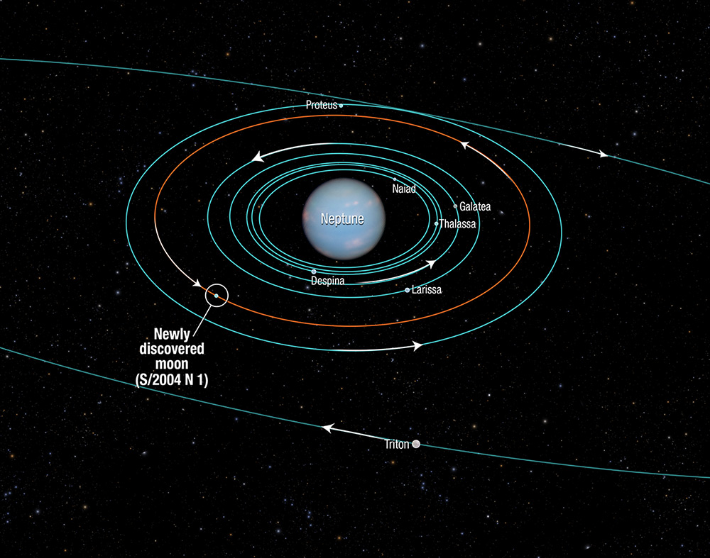 Orbit diagram showing several Neptune moons.