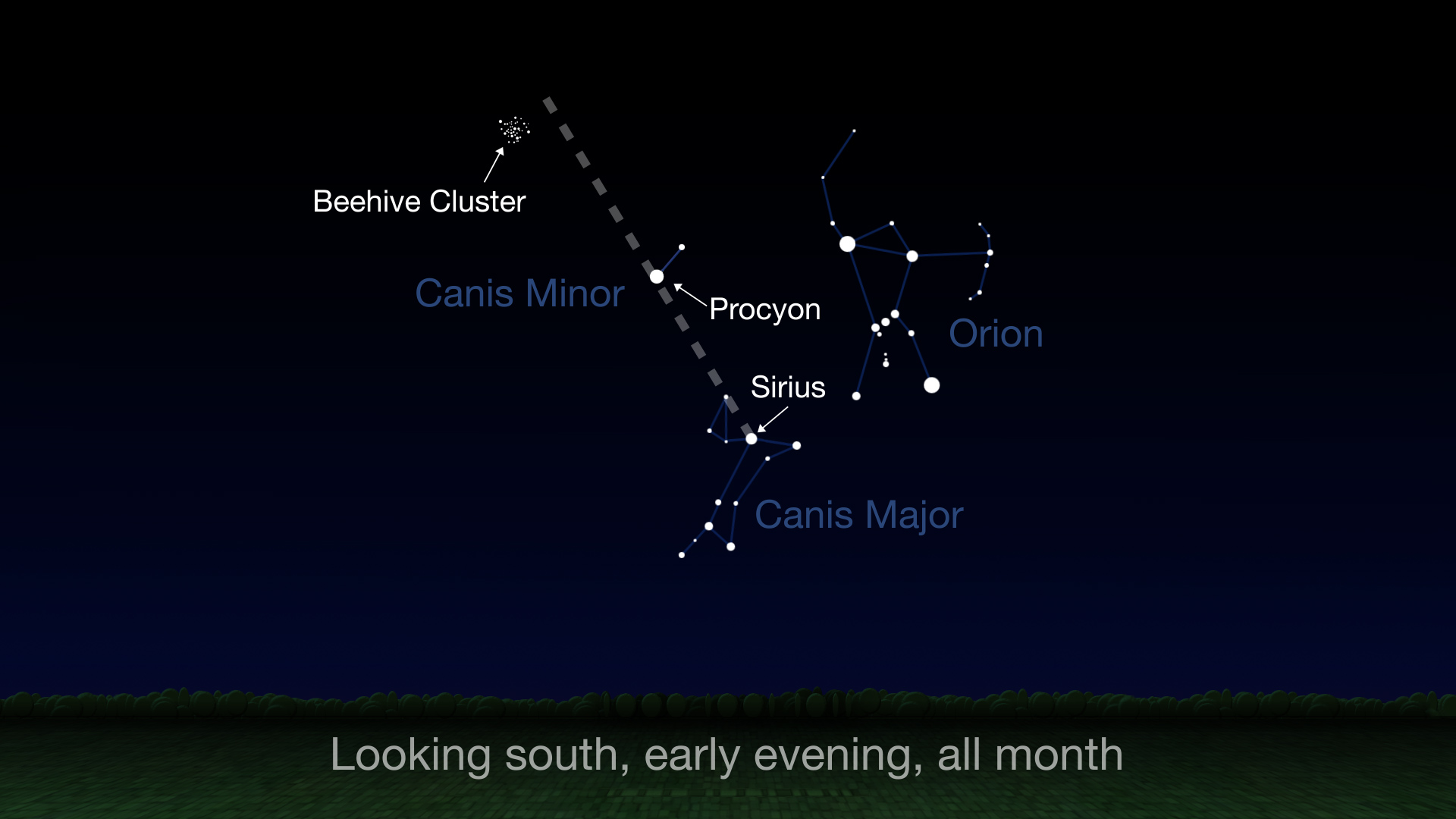 The Beehive Cluster is high in the sky to the south all of March.