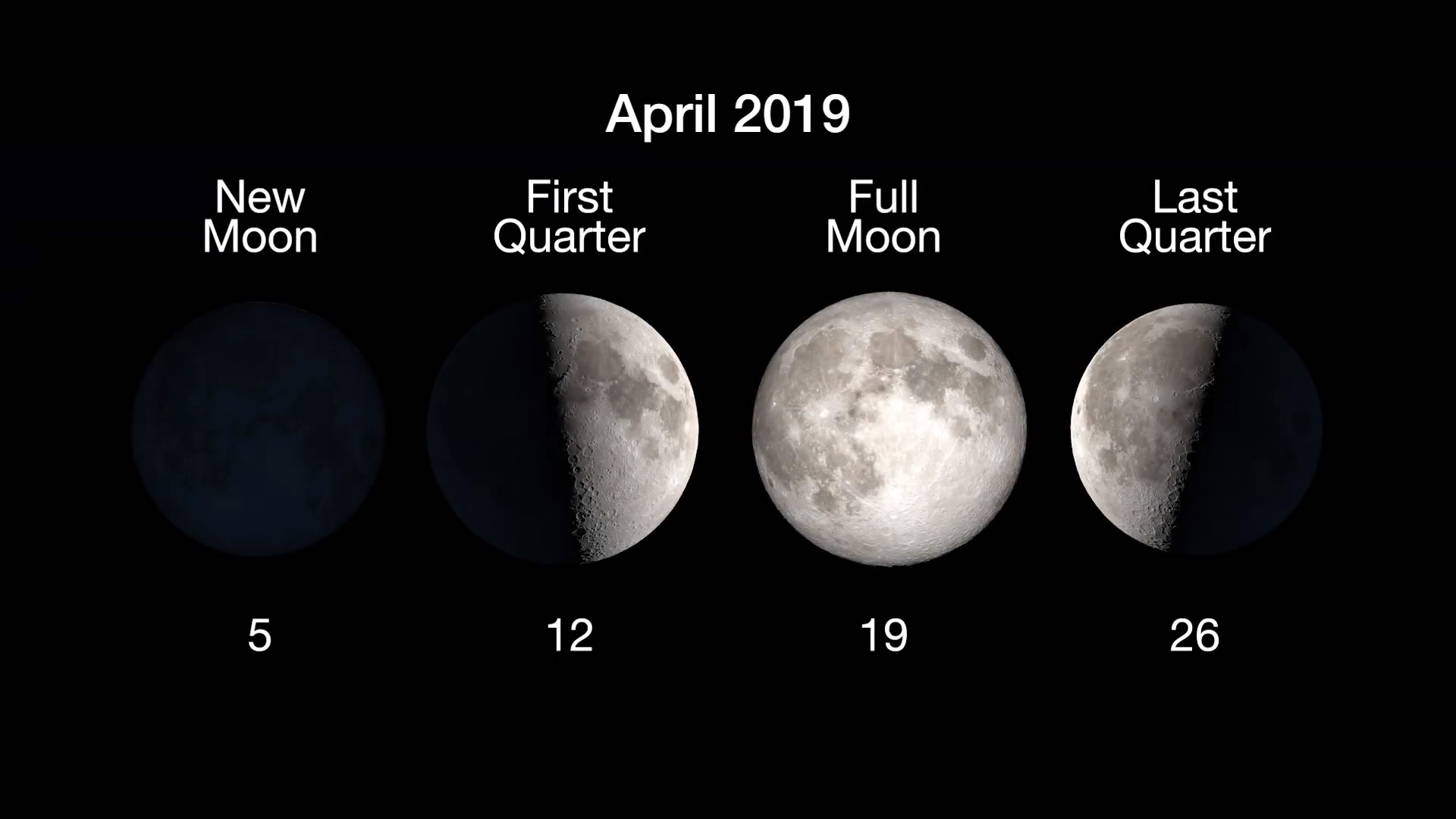 Moon Phases: New Moon, April 5, first quarter April 12, Full Moon April 19, last quarter, April 26.