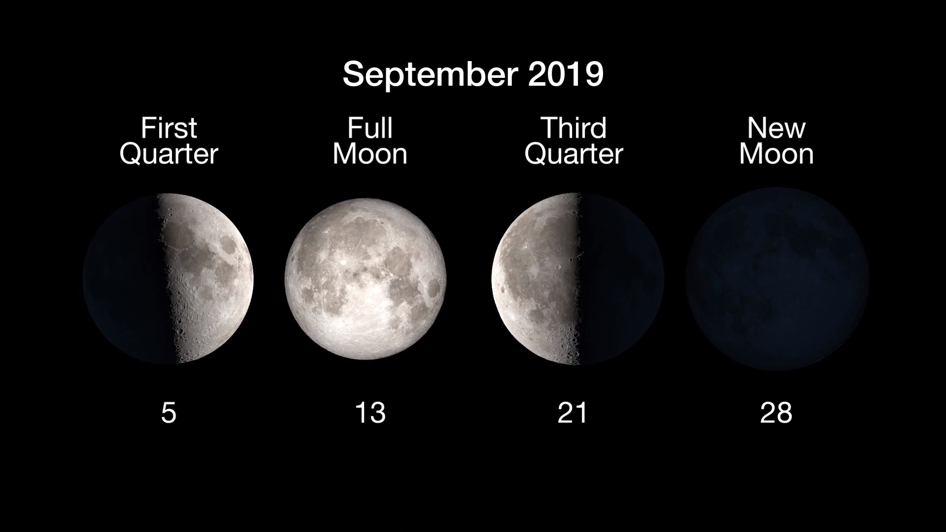 chart showing moon phases and dates