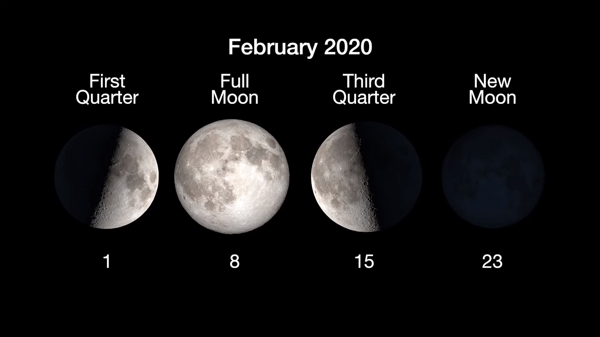 chart showing moon phases, with full on feb. 8 and new on feb. 23