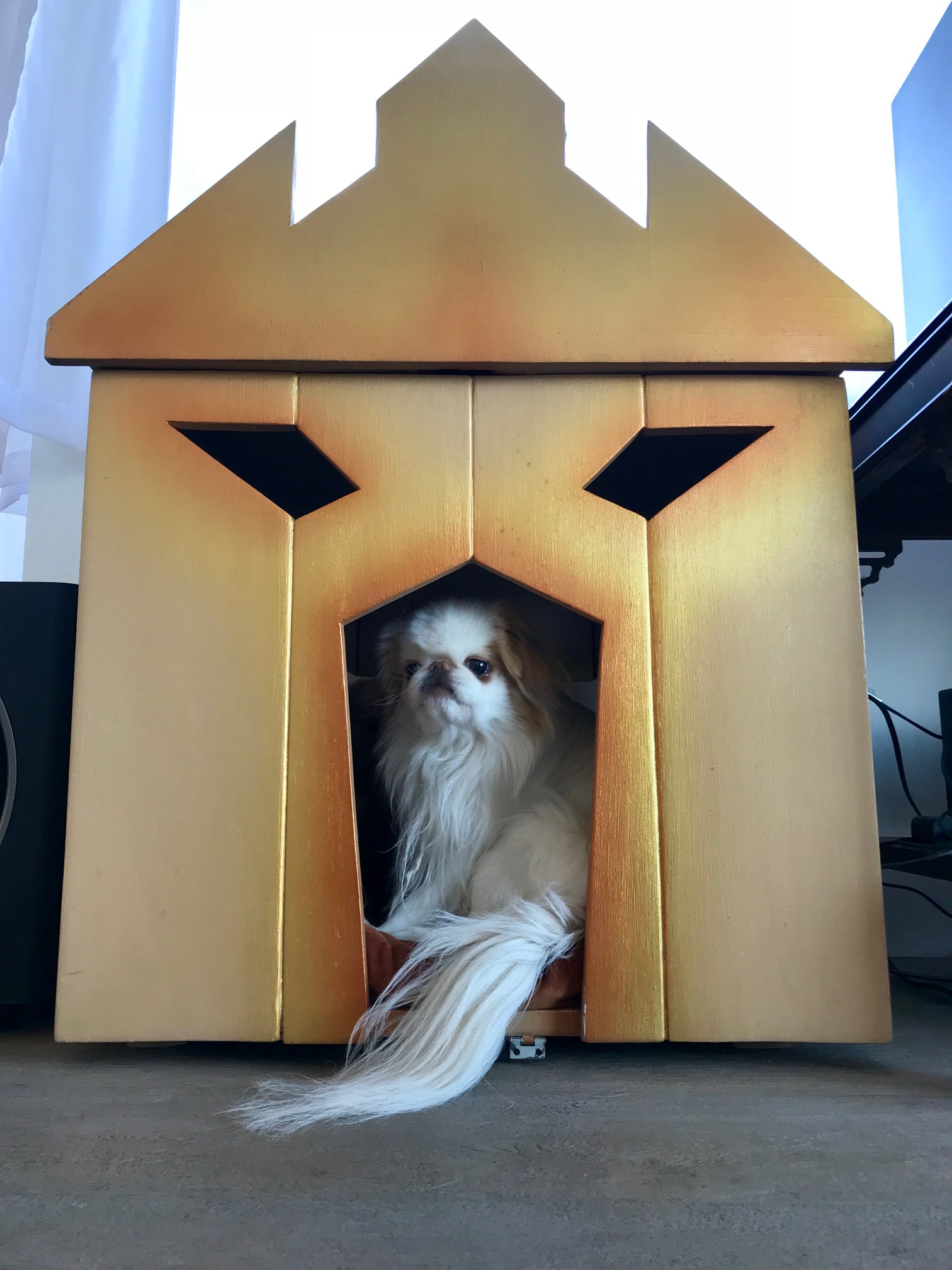 Michelle built this dog house for her dog.