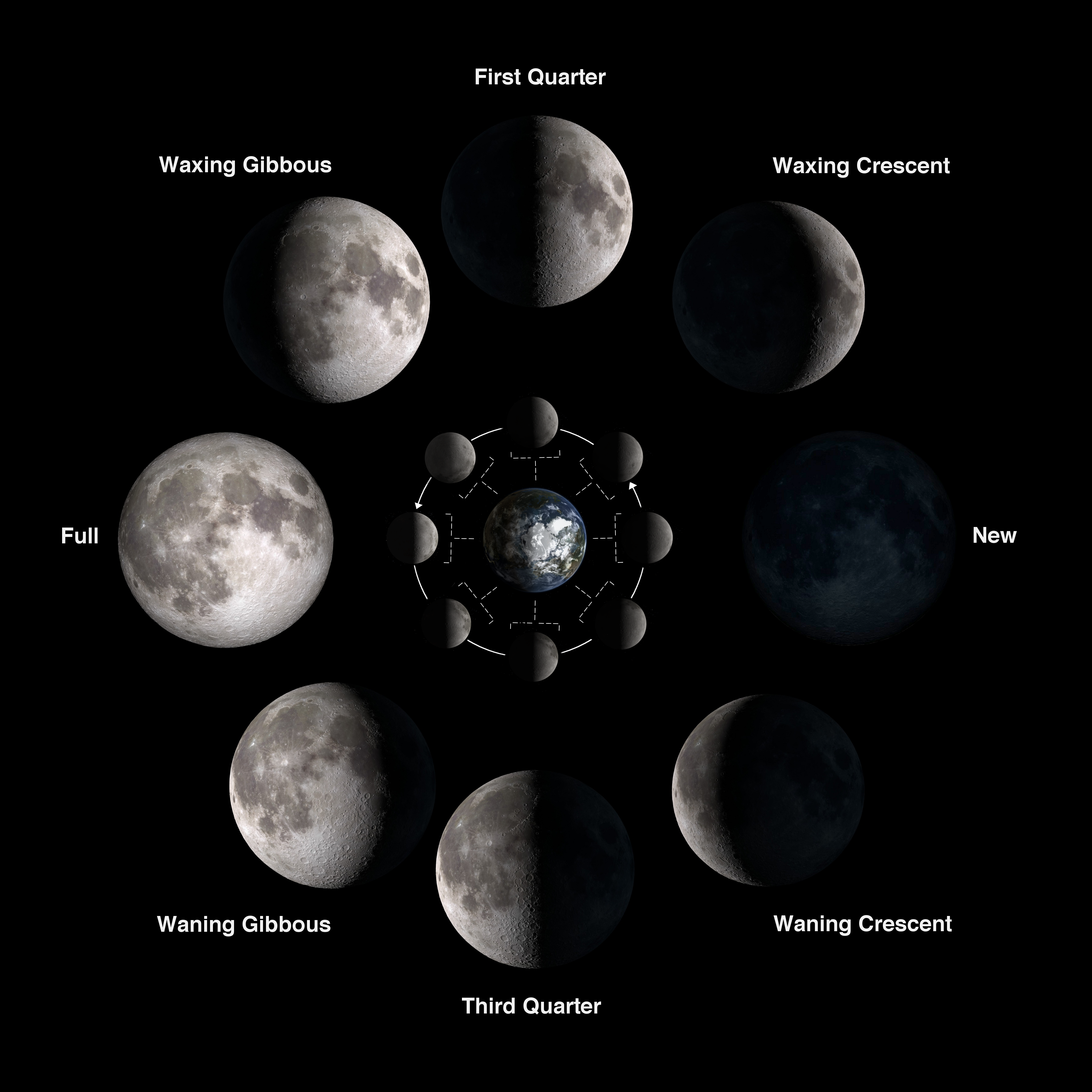 what is the moon cycle