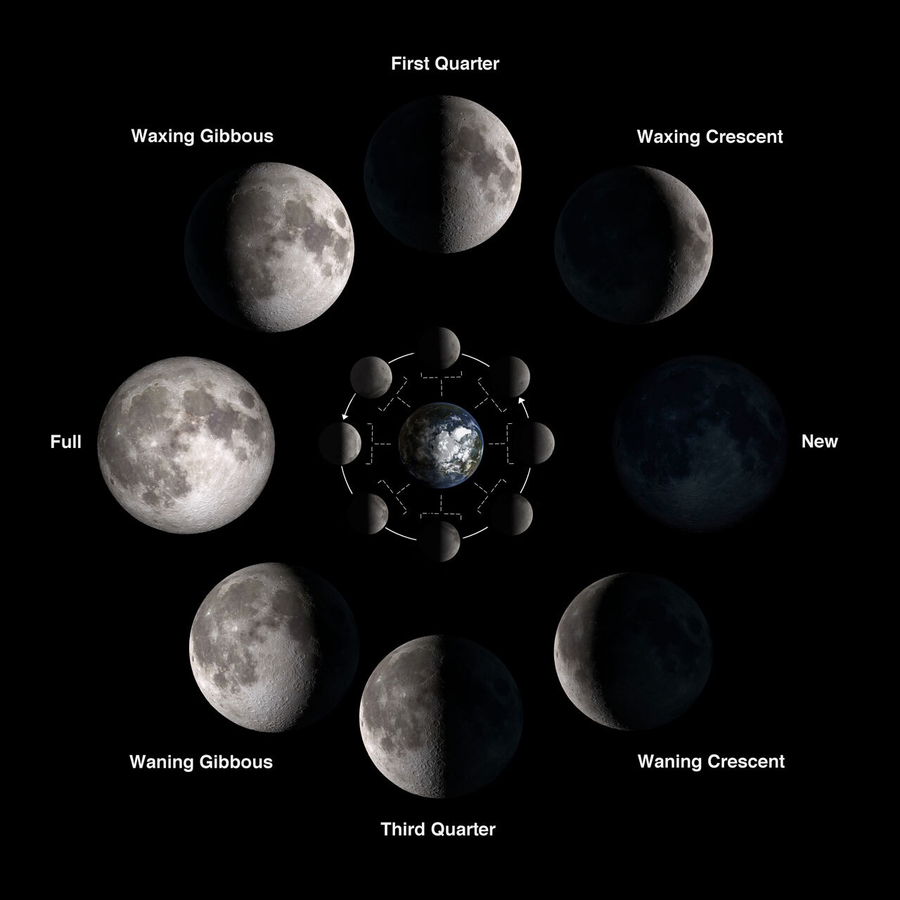 Graphic showing various Moon phases.
