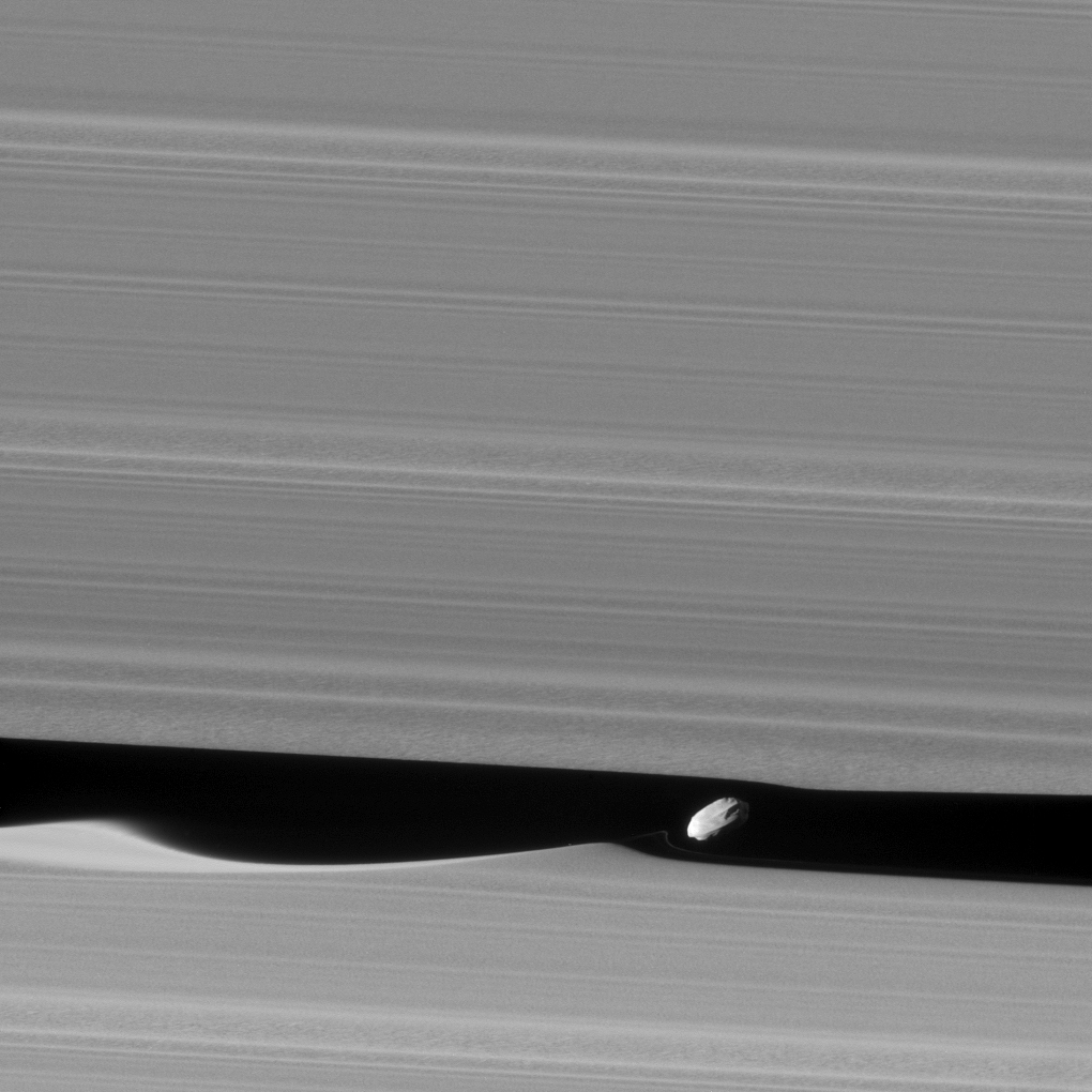 Black and white image of moon making waves in Saturn's rings.