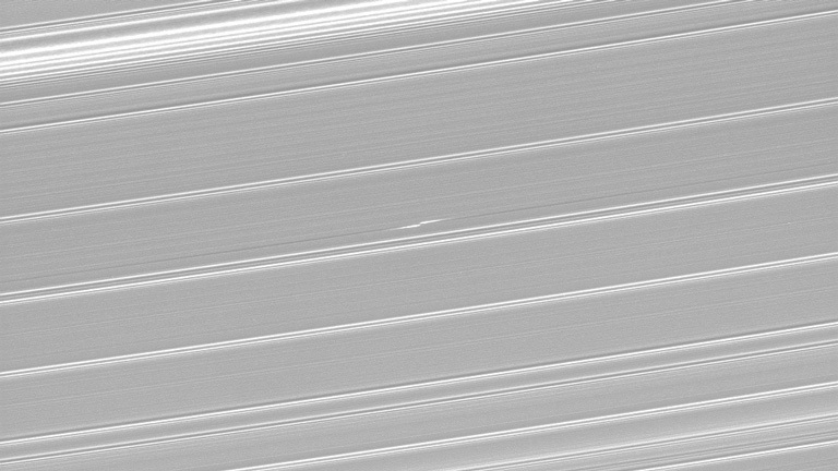 Propeller in Saturn's rings