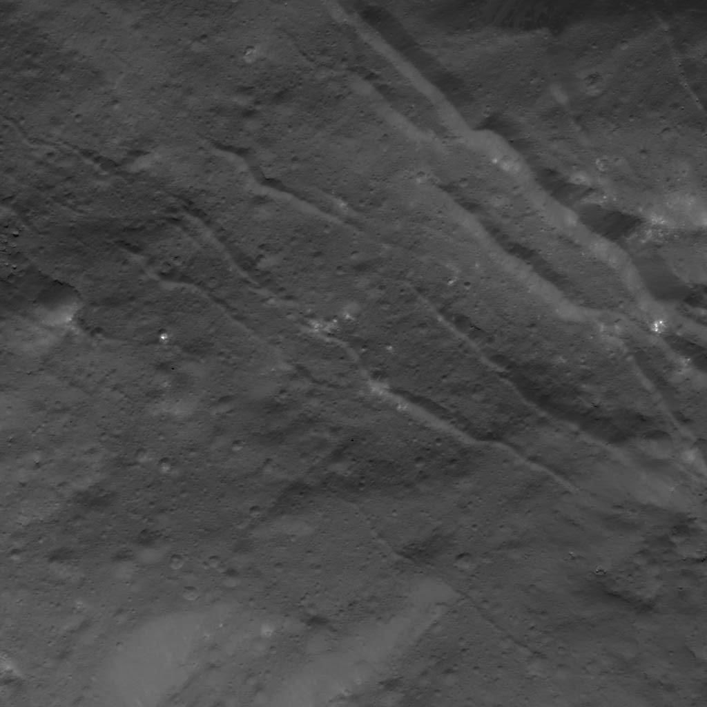 Fractures in Occator Crater