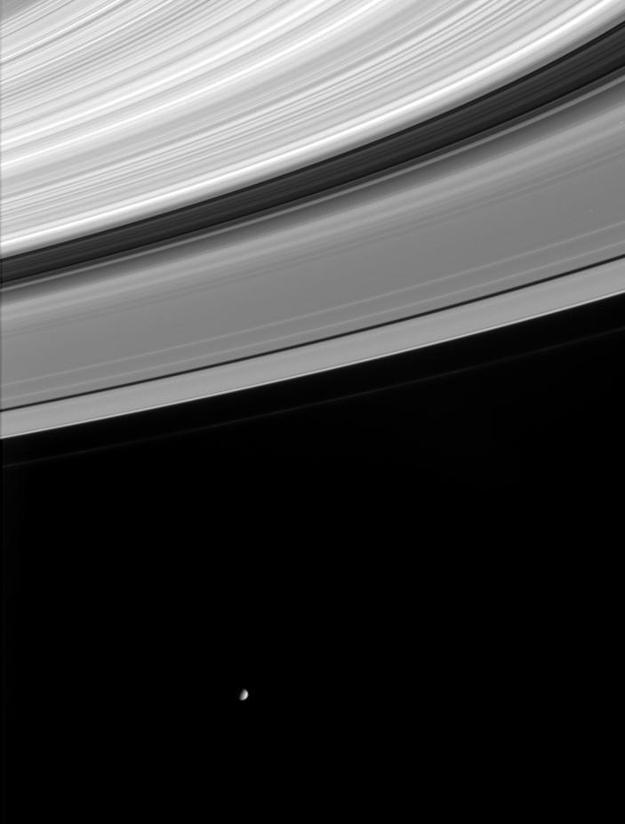 Mimas hovers below the wide expanse of Saturn's rings in this black and white image.