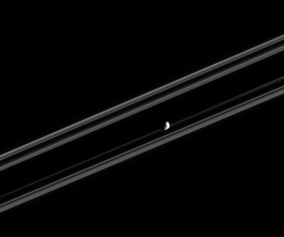 Saturn's moon Janus and the rings edge-on
