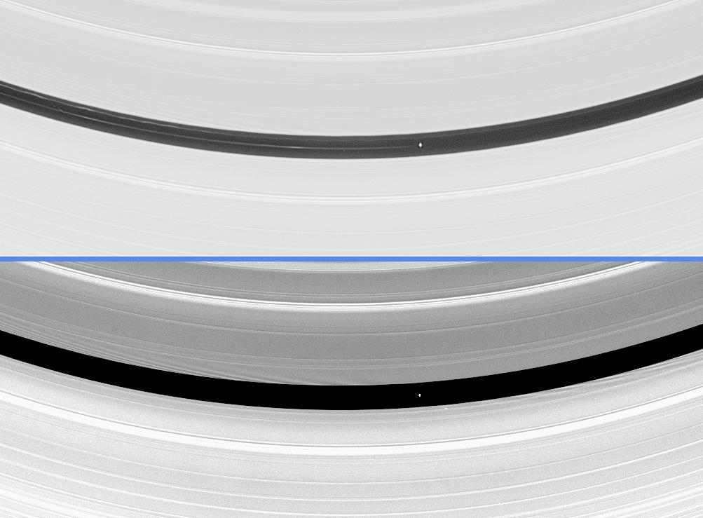 Pan orbiting within the Encke Gap in Saturn's A ring