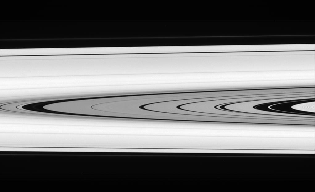 A detailed look at the faint rings within the Cassini Division