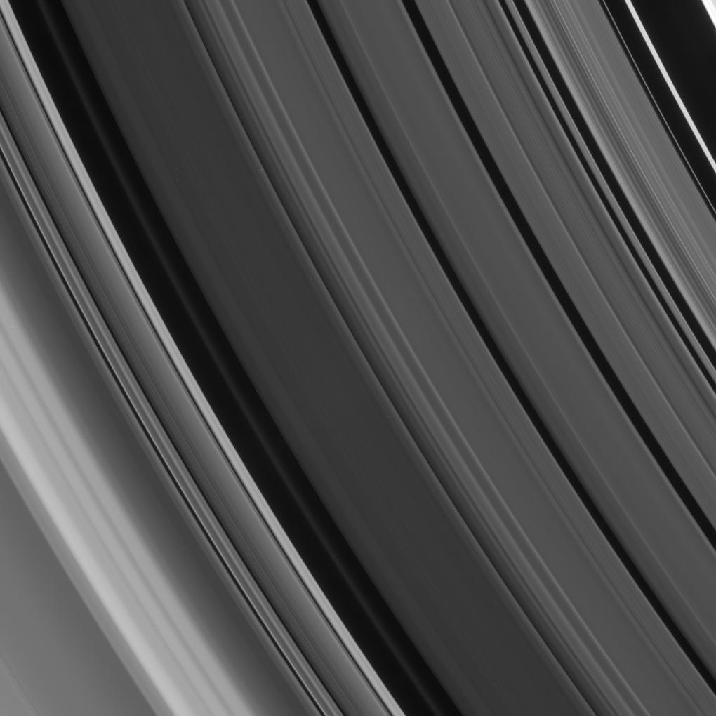 Sharp-edged details and smooth gradients in the ring features of the Cassini Division