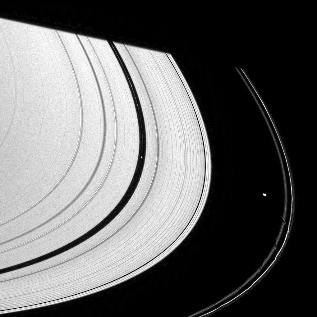 Saturn's rings and three small moons: Daphnis, Pan and Prometheus