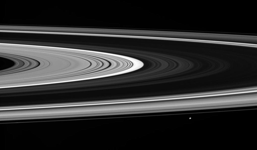 Saturn's rings and the moon Janus