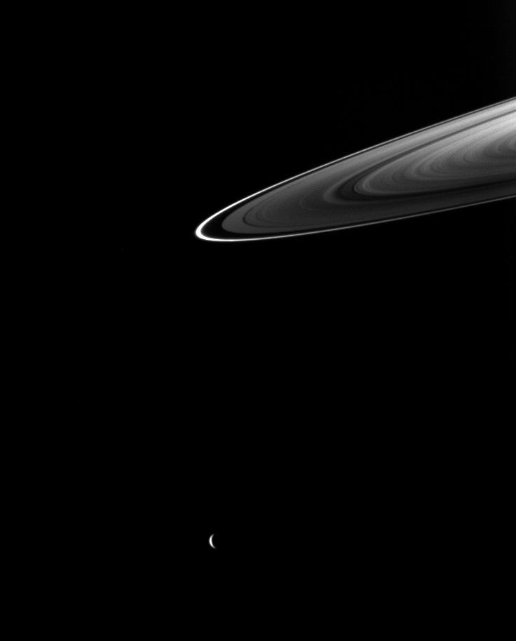 Rhea and Saturn's rings