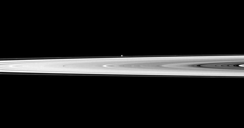 The tiny moon Pandora appears beyond the bright disk of Saturn's rings.