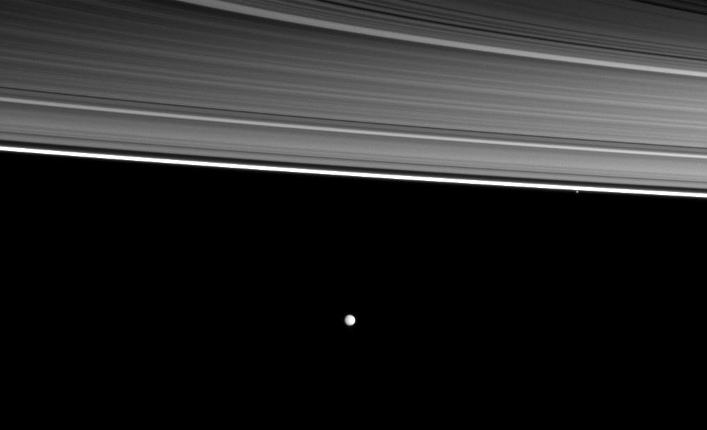 Pandora and Enceladus orbit beyond four of the planet's rings