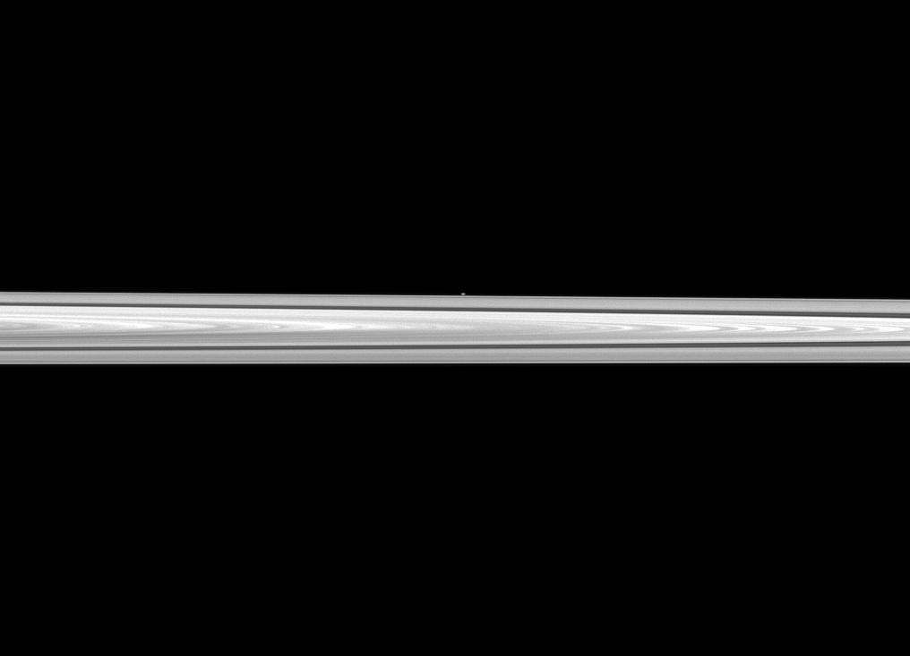 The Cassini spacecraft looks past Saturn's main rings to spy the tiny moon Atlas, which orbits between the main rings and the thin F ring.