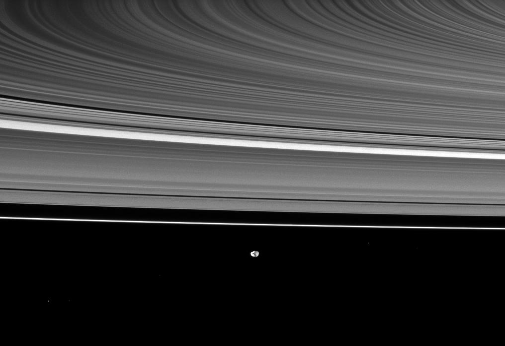 Saturn's rings appear curved in this Cassini spacecraft view, which also shows the moon Janus in the distance.