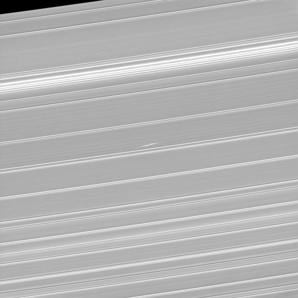 Black and white image of propeller-like structure in Saturn's rings.