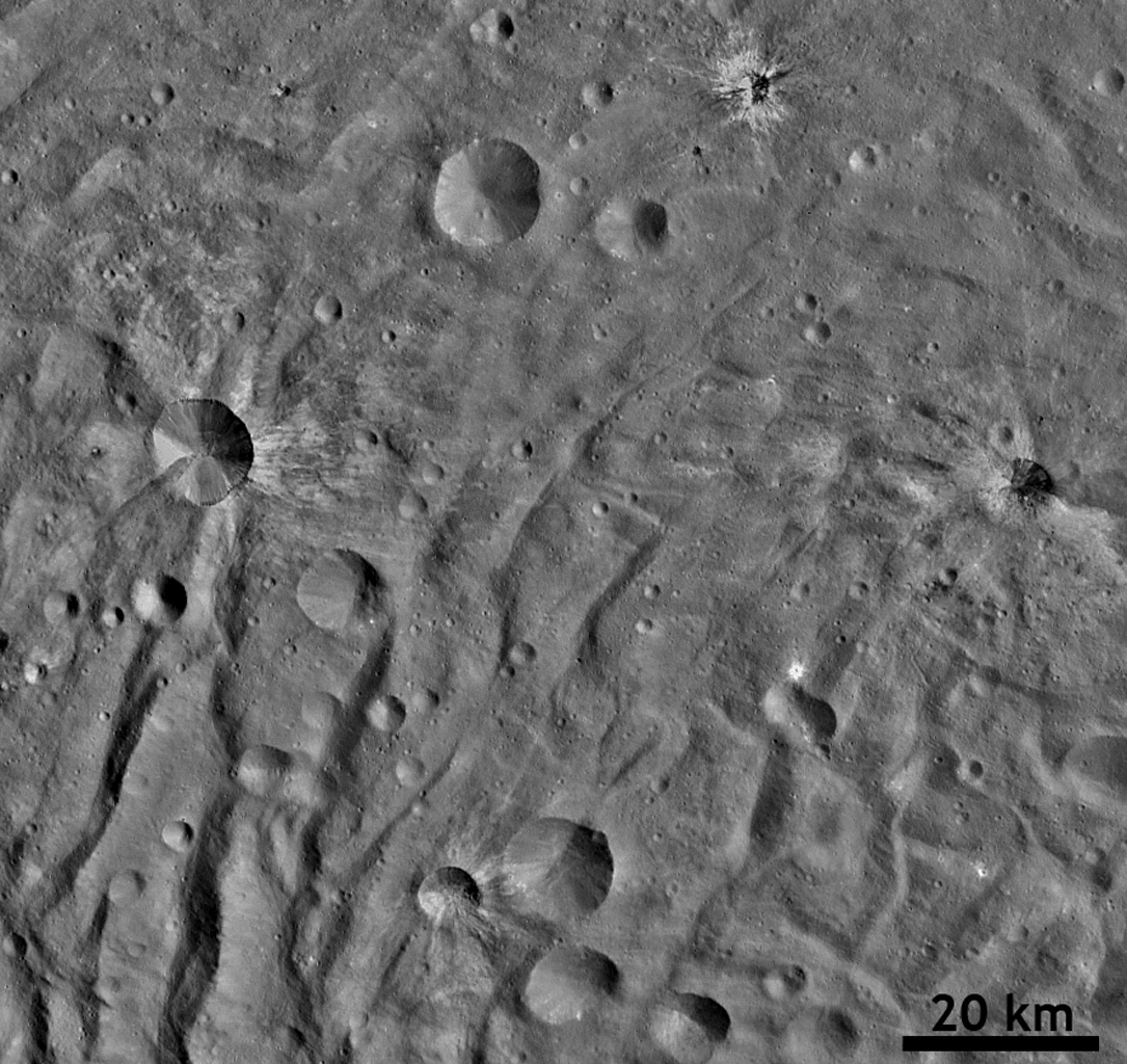Ray Craters in Vesta's South Polar Region