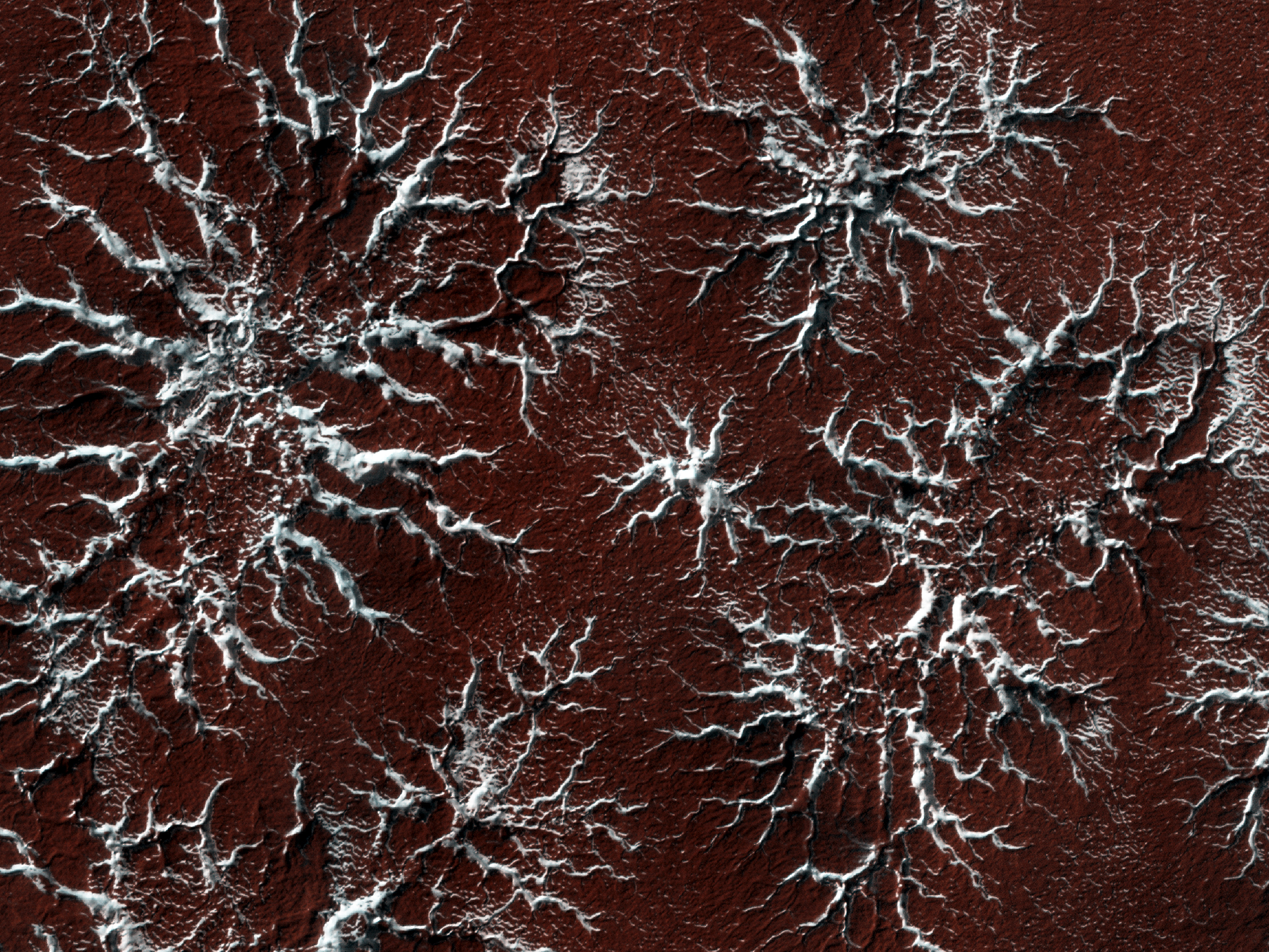 Spidery ice formations on the surface of Mars as seen from orbit.