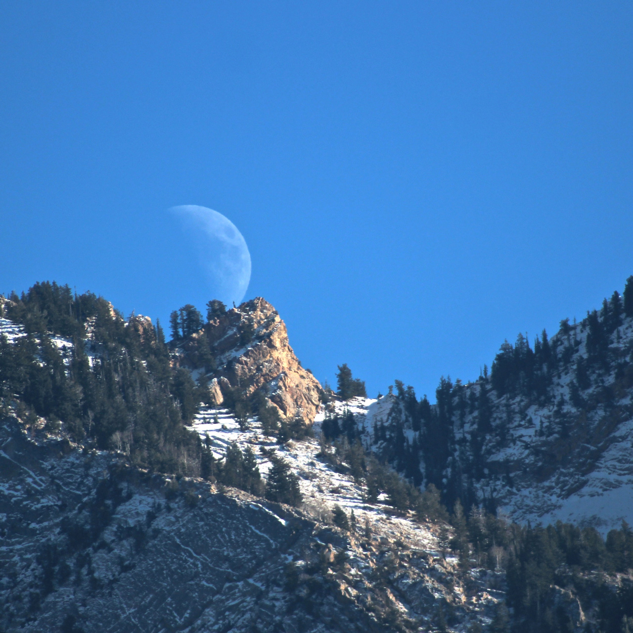 Moon in daylight rising over rocky ridge.