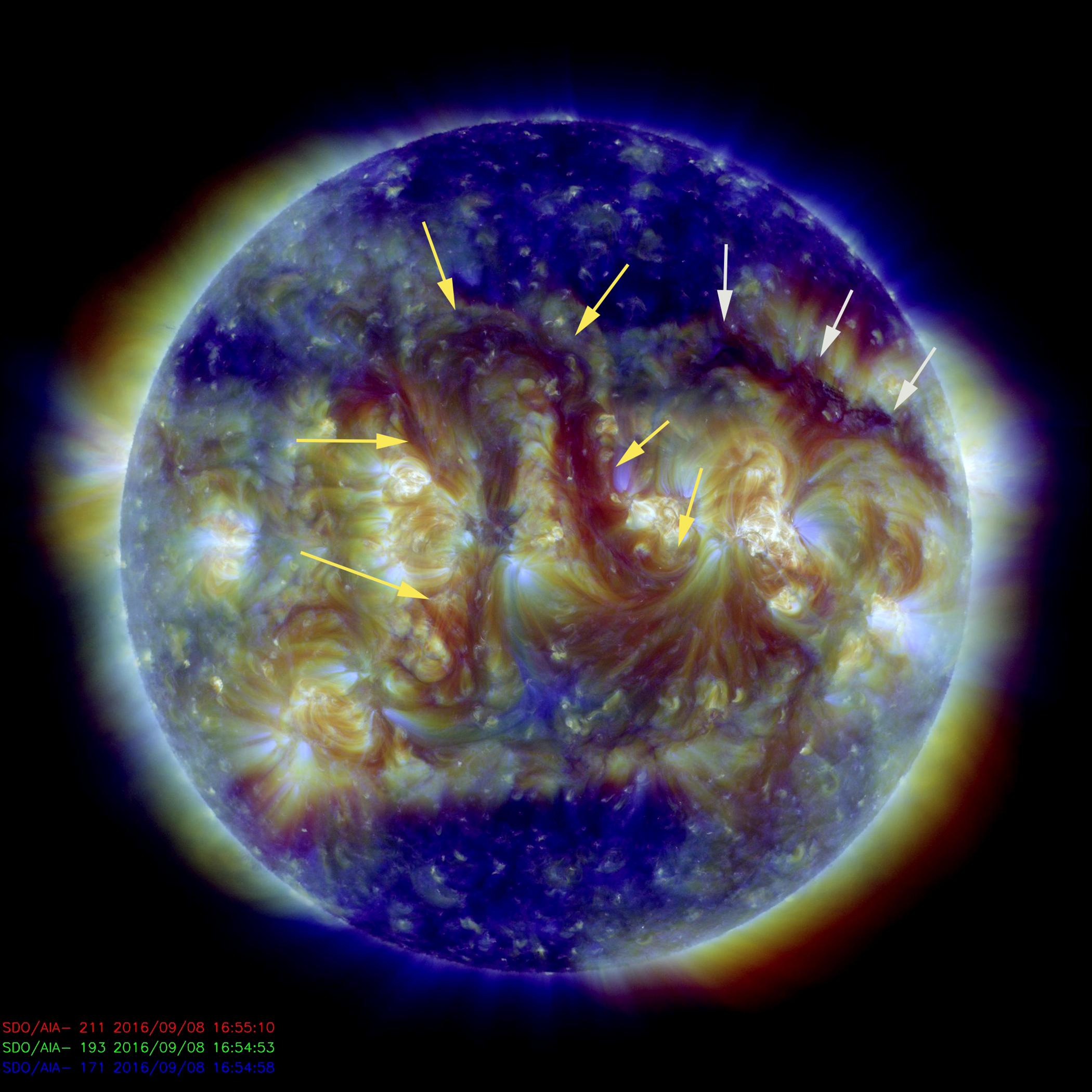 A pair of elongated filaments observed across the Sun. The image was made by combining three images in different wavelengths of extreme ultraviolet light shown in blues, yellow and dark red.