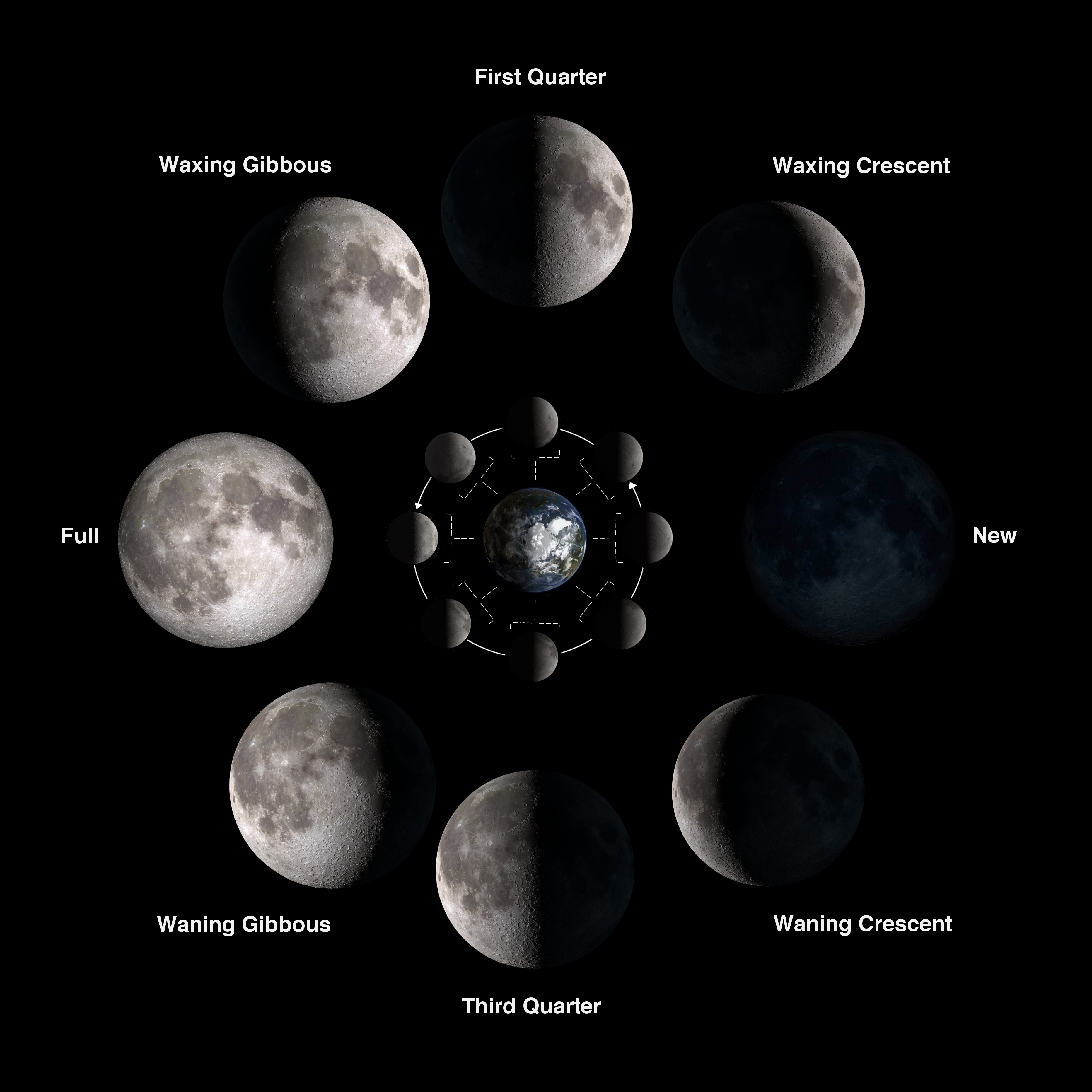Chart showing phases of the Moon.