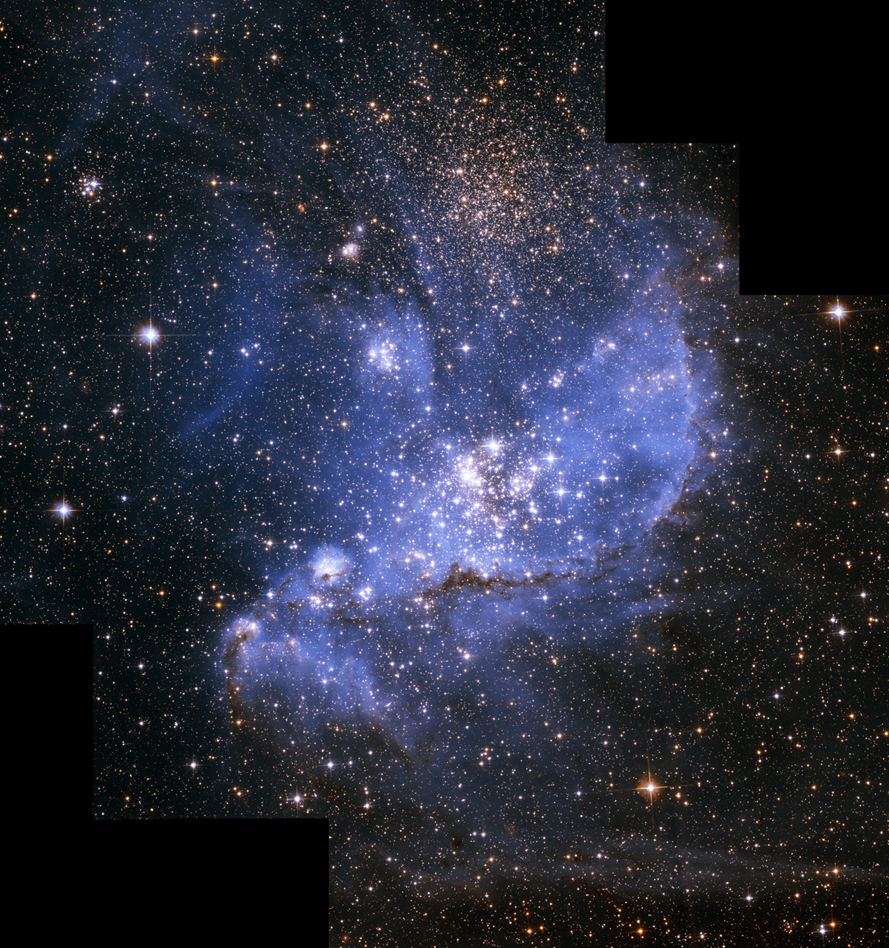Infant stars embedded in the nebula NGC 346