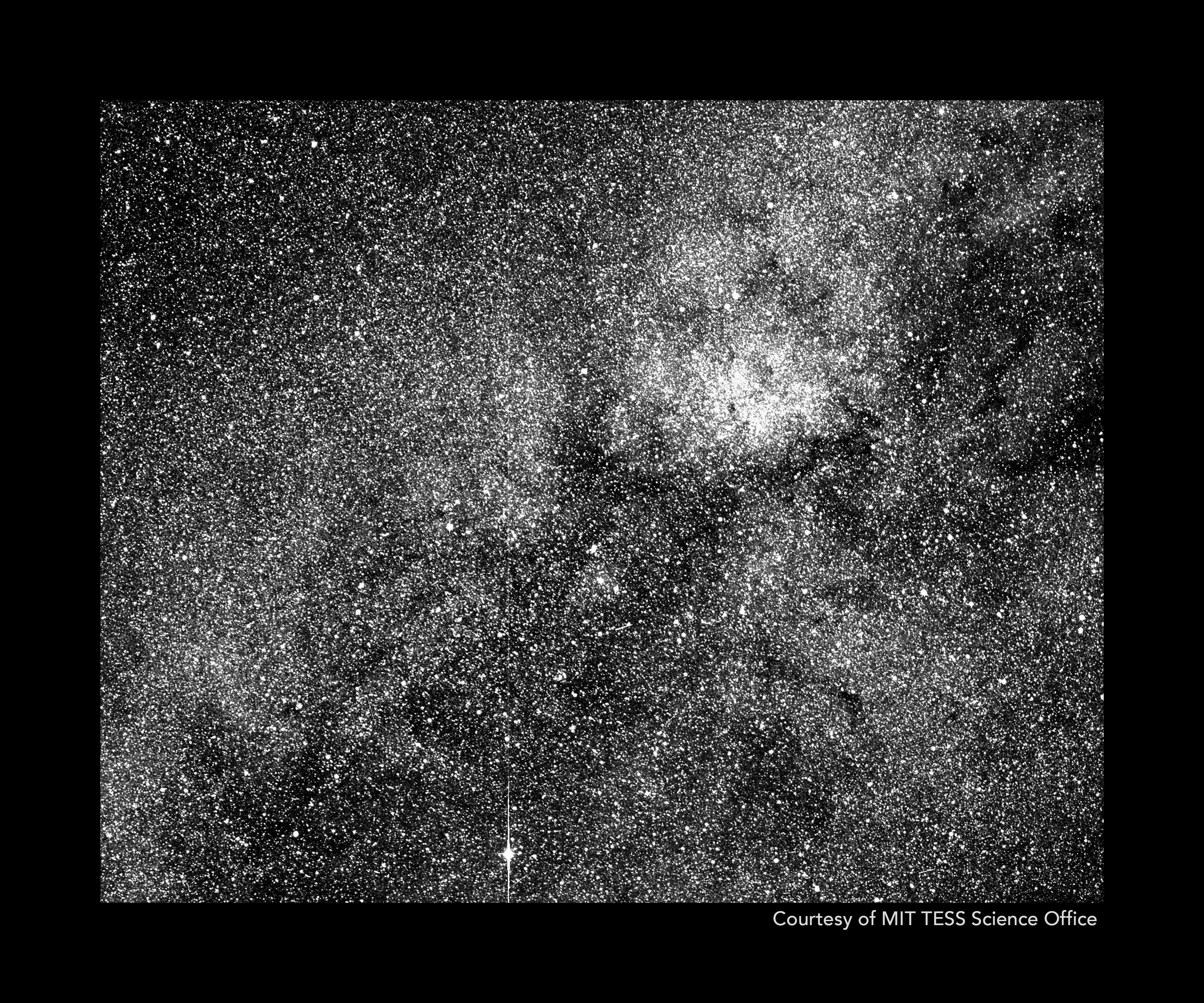 Black and white image packed with stars.
